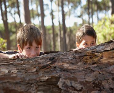 articleImage: Rząd przygotował projekt ws. zasiłków dla dzieci z rodzin dotkniętych przez klęski żywiołowe