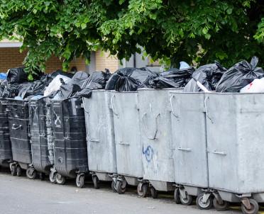 articleImage: Rada nie może nakazać utrzymywania w czystości miejsc ustawienia pojemników