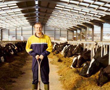 articleImage: Czy rolnik indywidualny to przedsiębiorca?