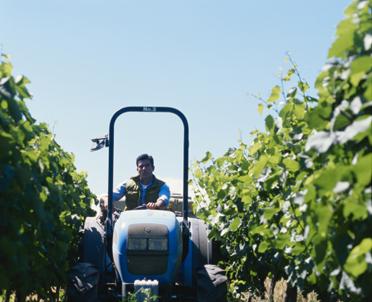 articleImage: Wypadek przy pracy rolniczej - nowelizacja zmieni ustawową definicję