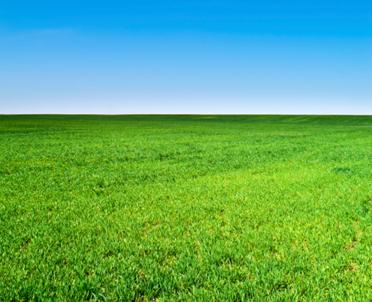 articleImage: Od dziś dopłat nie otrzyma osoba, która przejęła bezprawnie ziemię rolną