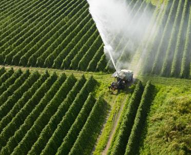 articleImage: Rolnik - zawód szczególnie (nie)bezpieczny