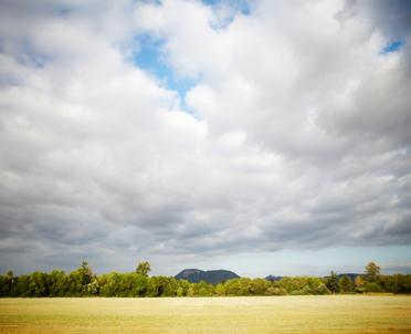 articleImage: Nowelizacja ustawy o ochronie gruntów rolnych i leśnych: odrolnienie tylko za zgodą ministra
