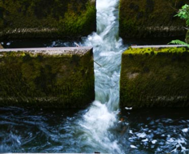 articleImage: ZMP: projekt ustawy Prawo wodne dąży do centralizacji państwa