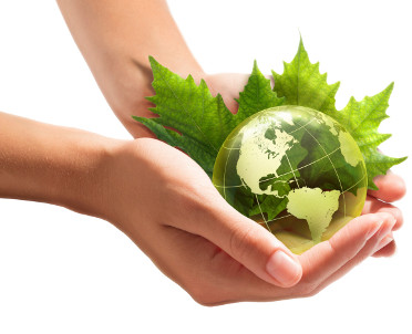 articleImage: Sondaż: Włosi najbardziej zaniepokojeni degradacją środowiska naturalnego