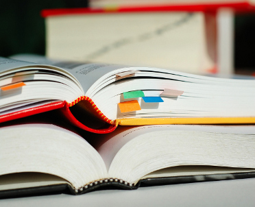 articleImage: Rządowy podręcznik przygotuje Maria Lorek