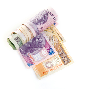 articleImage: Płace skarbników regulują przepisy o pracownikach samorządowych