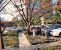 Obrazek do artykułu: WSA: mieszkaniec nie ma zagwarantowanego prawa parkowania na drodze publicznej