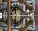 Obrazek do artykułu: Nowe rozporządzenie ws. zabezpieczania zbiorów muzeum