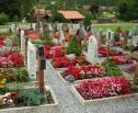 Obrazek do artykułu: SA: nie można zastrzec, kto ma być pochowany w wykupionym grobie