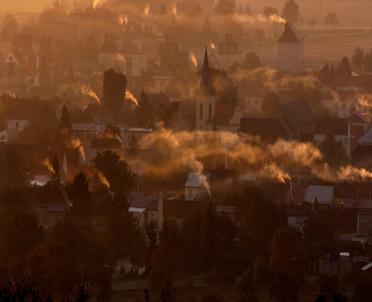 articleImage: Pajęczyna pomoże w analizie jakości powietrza