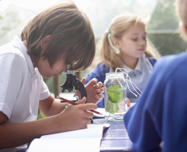 articleImage: Zakładanie przedszkola-obowiązki założycieli i kadry pedagogicznej