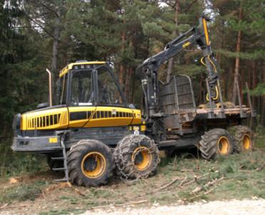 articleImage: MŚ: będziemy wycinali drzewa w Białowieży, żeby zapewnić bezpieczeństwo