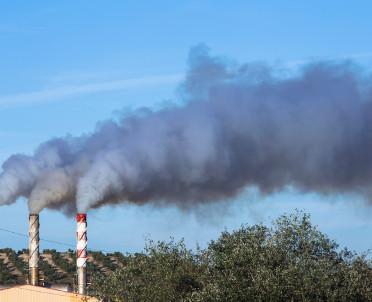 articleImage: Od przyszłego sezonu grzewczego będą normy węgla do domowych pieców