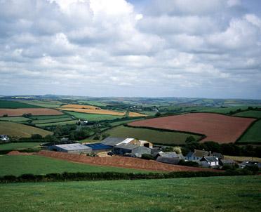 articleImage: Sądy mają problem z wykładnią dekretu o reformie rolnej