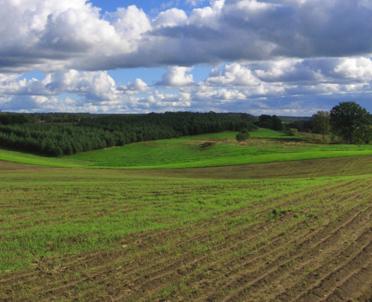 articleImage: KE wciąż analizuje polskie przepisy o obrocie ziemią