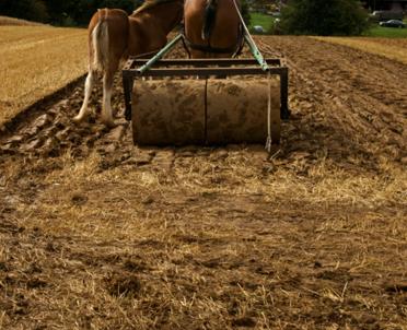articleImage: Od 17 maja wyższe odszkodowanie za wypadek w rolnictwie
