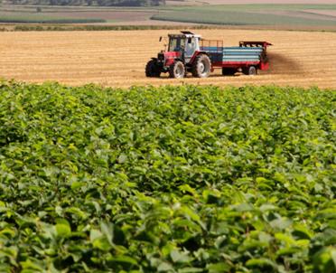 articleImage: Izby Rolnicze postulują zwiększenie dopłat do paliwa rolniczego