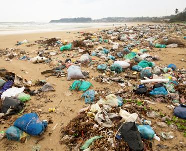 articleImage: Wielkopolscy radni chcą rozwiązania sprawy nielegalnych składowisk odpadów