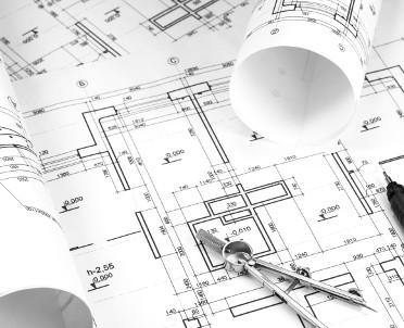 articleImage: Trwa sprawdzanie decyzji ws. budowy w Puszczy Noteckiej