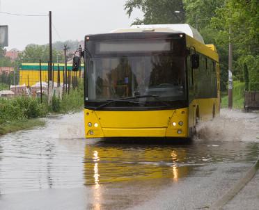 articleImage: Zielona Góra: wybrano dostawcę autobusów