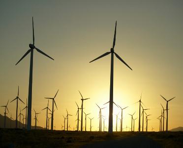 articleImage: NSA: decyzję środowiskową może podważyć kontrraport