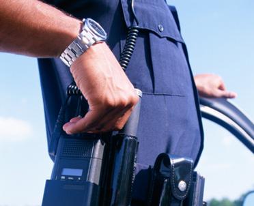 articleImage: Prywatna ochrona to element polityki bezpieczeństwa
