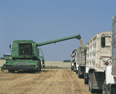 articleImage: Praca w gospodarstwie rolnym może być zaliczona do stażu pracy pomimo równoległej umowy - zlecenia