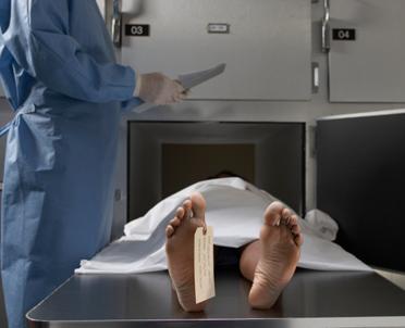articleImage: Wstępna przyczyna zgonu lekarza z Włoszczowy jest znana