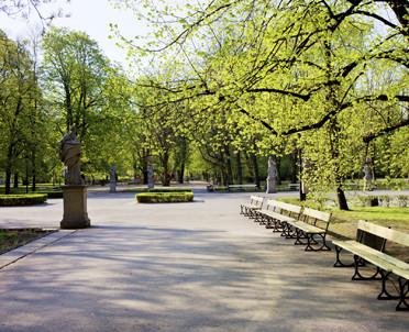 articleImage: Ekolodzy: drzewa są miastom bardzo potrzebne